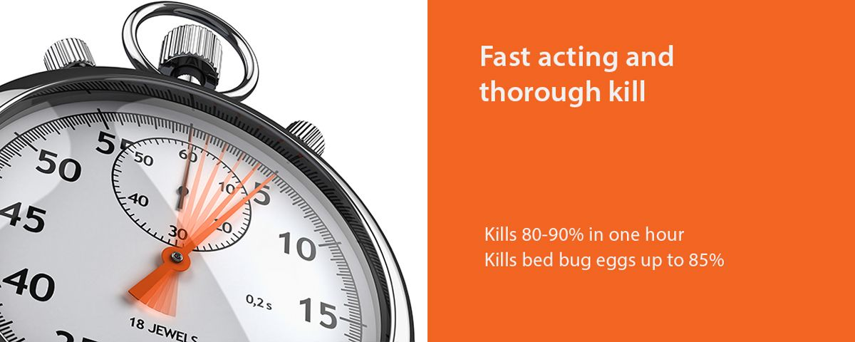 Fantastic Bed Bug Killer 16Oz By Ecoraider Green Non Toxic 100 Kill Extended Protection Home Interior And Landscaping Spoatsignezvosmurscom