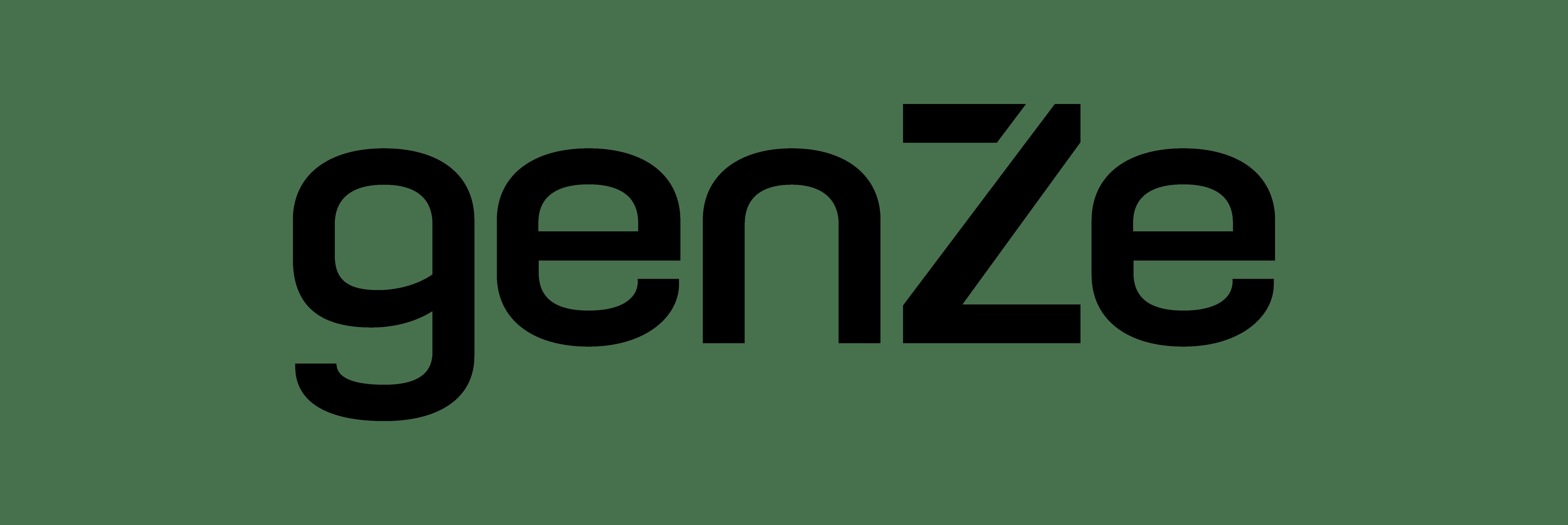 GenZe Sport & Recreational Electric Bike, Black