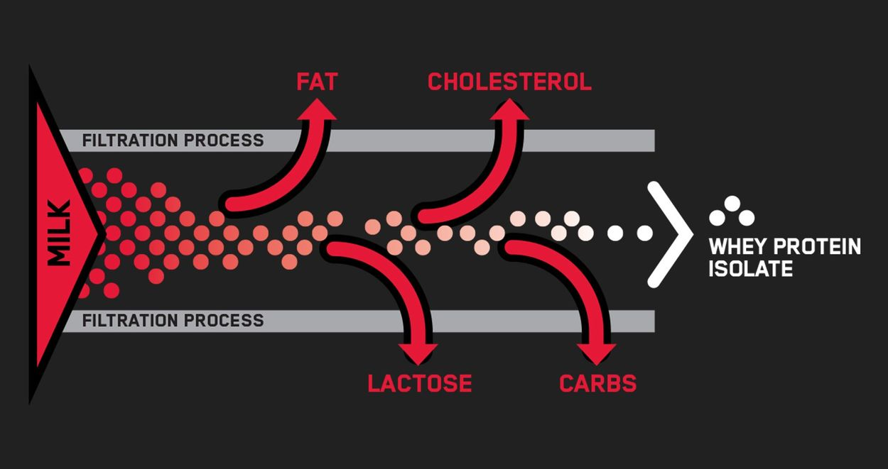 Using a series of sophisticated separation processes, excess fat, cholesterol, sugars, and other materials are removed so that only 1 gram of total fat and 3 grams of carbohydrates remain in each serving of Performance Whey Isolate™.