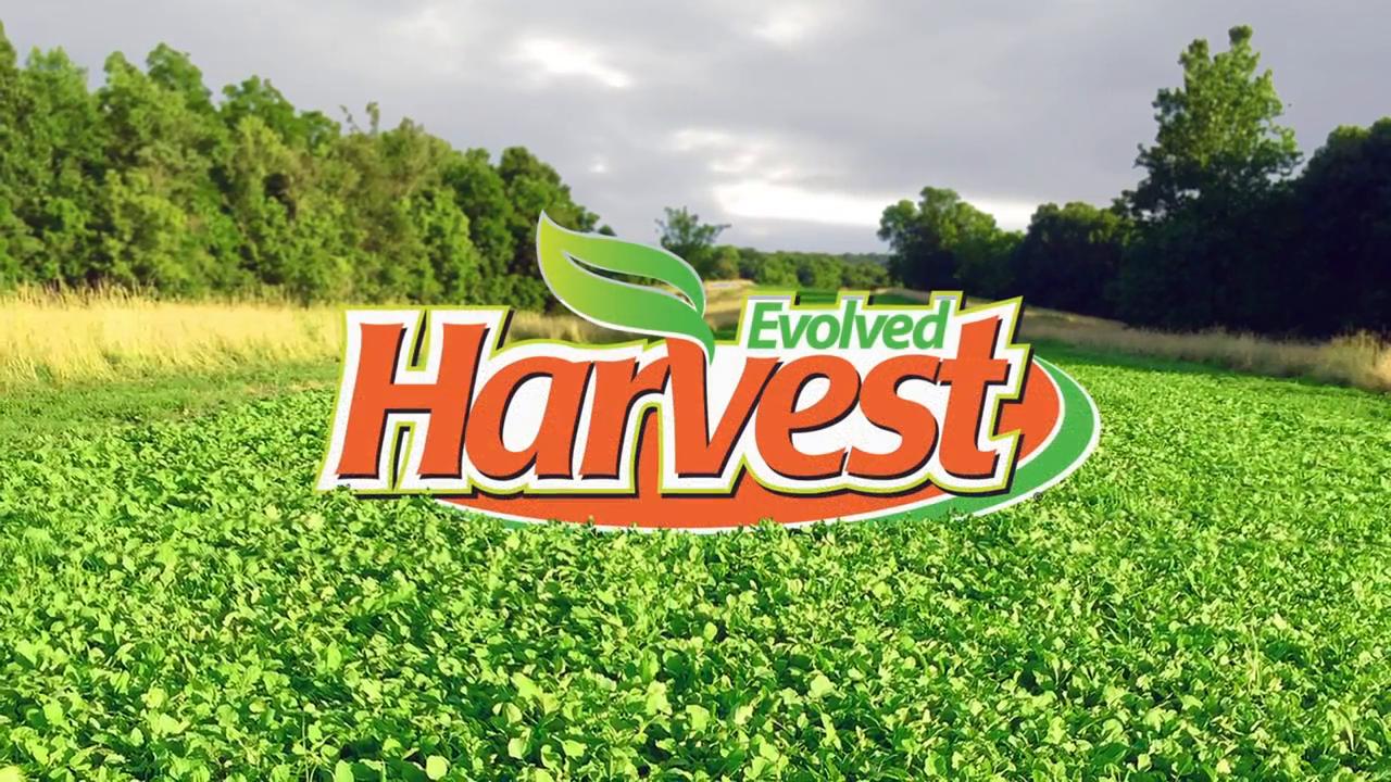 Evolved Harvest Card 7 Stud Full Season Forage Food Plot Seed 10 Lb Bag Walmart Com