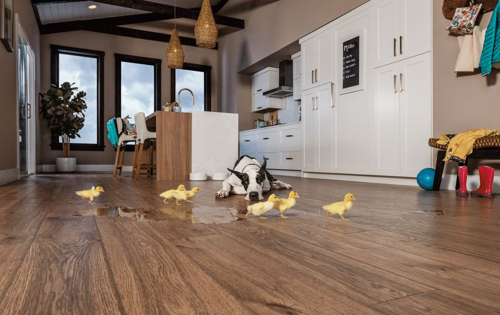 Meet Our Pergo Timbercraft Collection The Most Authentic Wood Looks With Waterproof Protection They Re Perfect Floor For Busy Families Kids