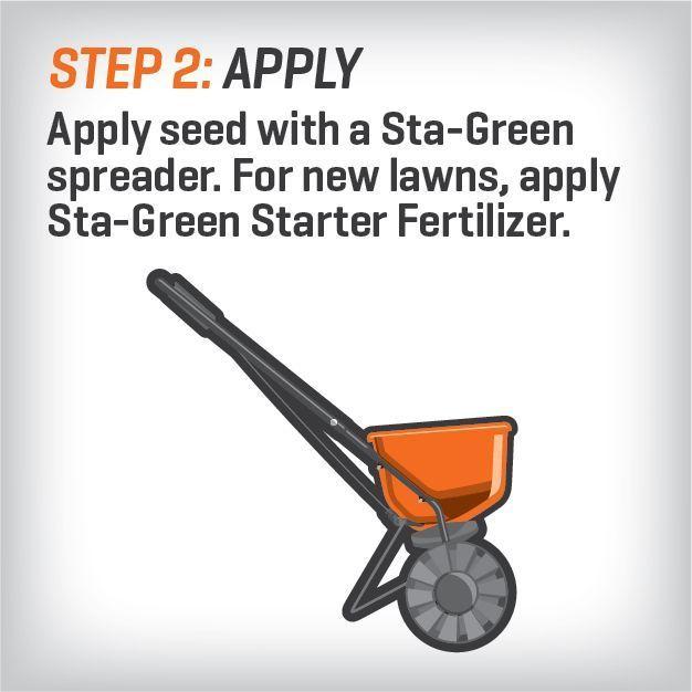 15lb Sta Green Builder Bermuda Grass Seed Lawn Garden 15,000 sqft Fast Grow Turf