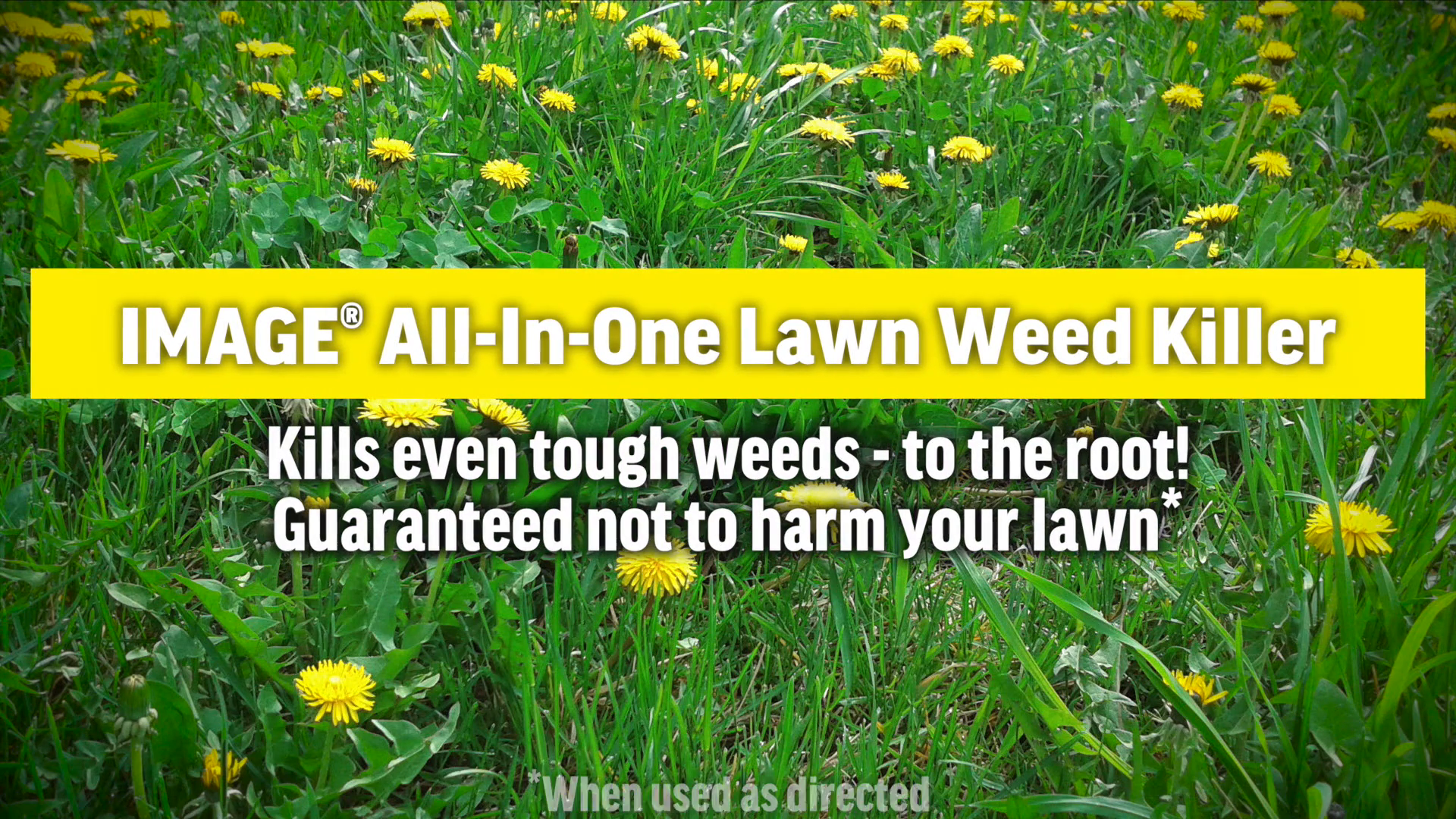 Shop Image All In One 24 Oz Weed Killer At Lowes